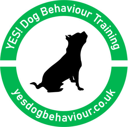 YES! Dog Behaviour & Training
