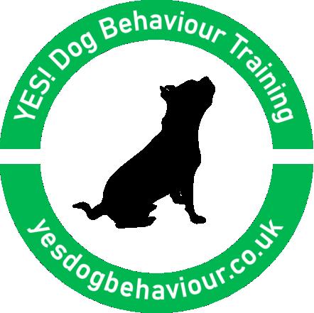 YES! Dog Behaviour Training